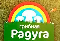 ООО «Грибная радуга»